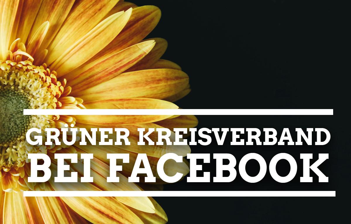 Als Fan immer informiert! Die Bielefelder Grünen auf Facebook